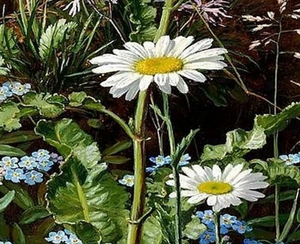 Dog roses, forget-me-nots, daisies, buttercups and clover - Otto Ottesen