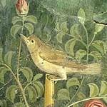 Fresco found on Pompeii