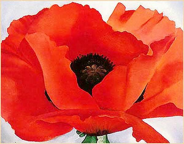 Red Poppy - G. O'Keeffe