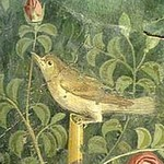 Fresco found on Pompeii