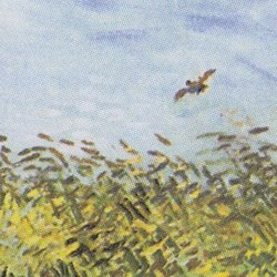 Wheat Field with a Lark - V. van Gogh