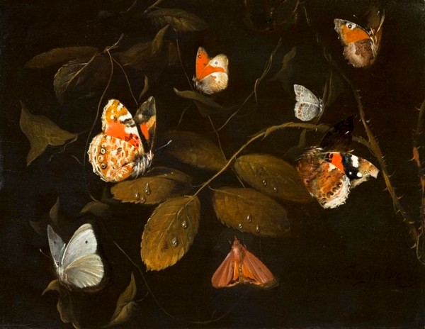 Six Butterflies and a Moth on a Rose Branch - William Gouw Ferguson