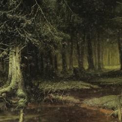 A look into the forest at dawn - Julius von Klever