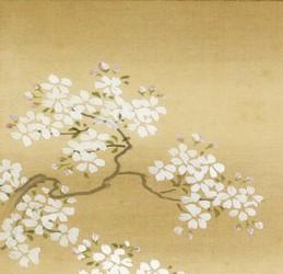 Bird in Cherry Tree - Toshun